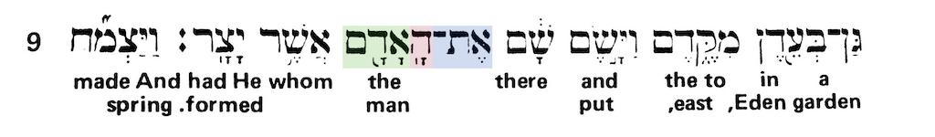 Green's Interlinear Bible - The Word Man Genesis 2:8 - Short Verse