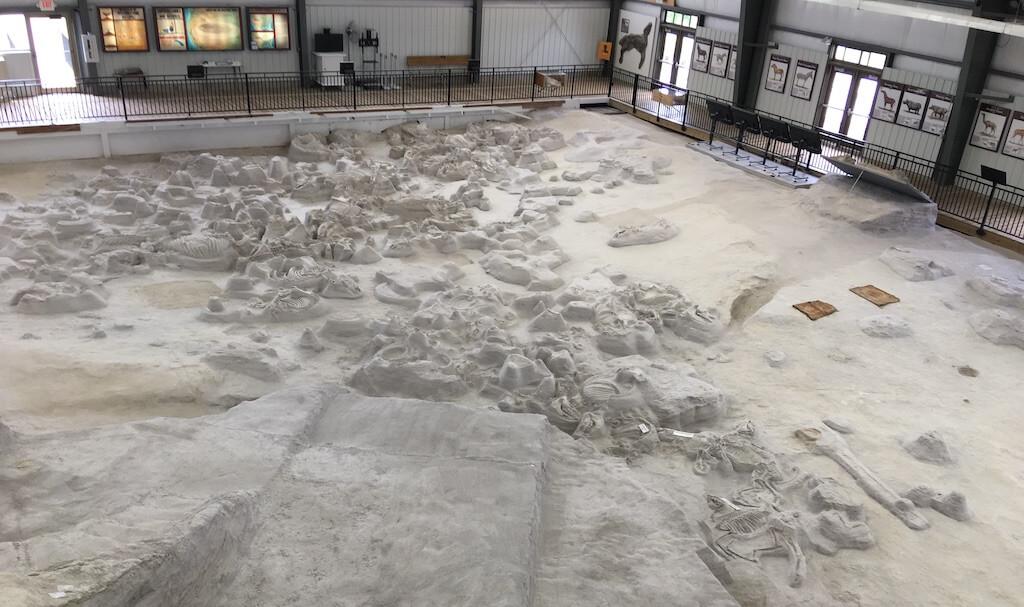 Rhino Barn From Top Platform - Ashfall Fossil Beds